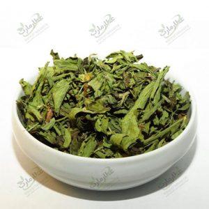 گیاه استویا